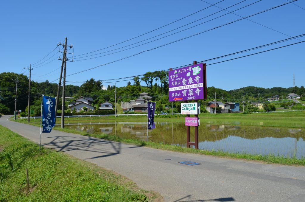 嵐山町金泉寺(あじさい寺)入口付近