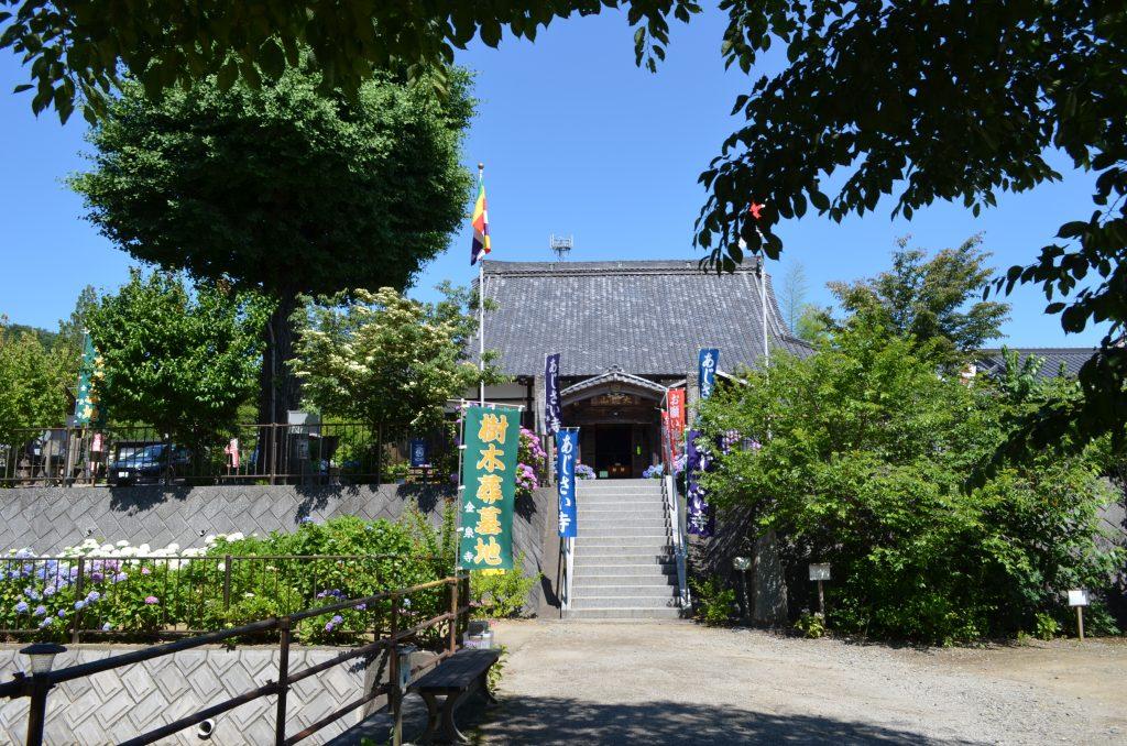 嵐山町金泉寺(あじさい寺)本堂へ上がる階段 左側には池あり
