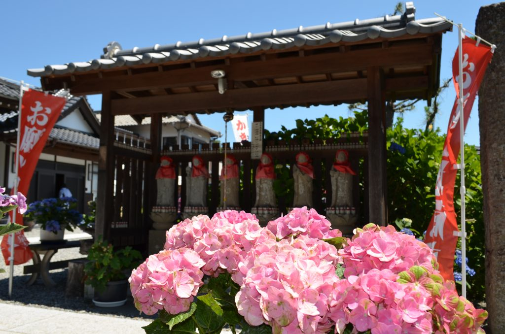 嵐山町金泉寺(あじさい寺)境内にある六地蔵様 あじさいに囲まれています