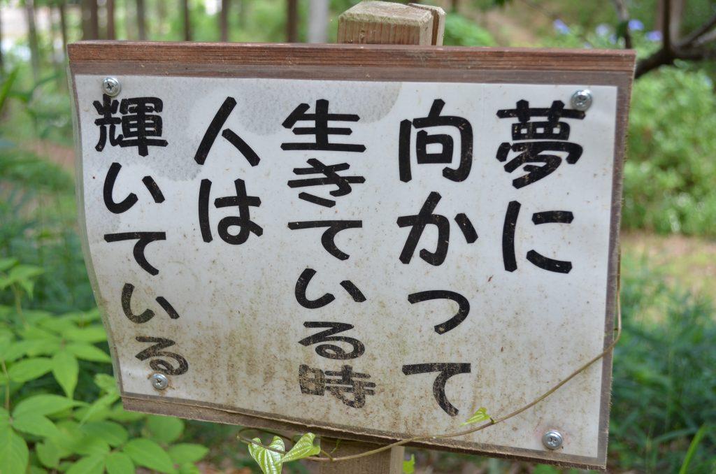 あじさい寺(金泉寺)境内に立っている有難い言葉が書かれた掲示板その2 「夢に向かって生きている時 人は輝いている」