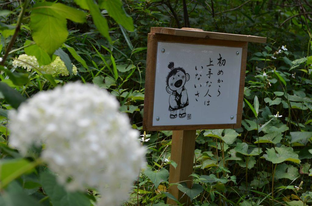 あじさい寺(金泉寺)境内に立っている有難い言葉が書かれた掲示板その1 「初めから上手な人はいないさ」